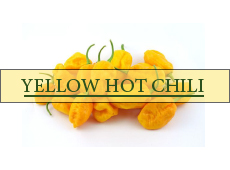Fave Yellow Hot Chili
